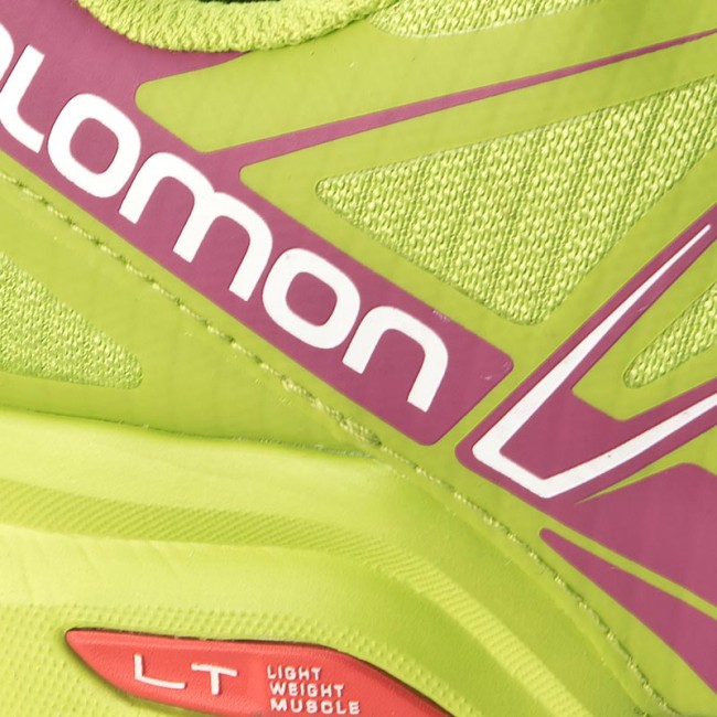 Skor SALOMON Speedcross Pro W 383190 21 G0 Granny GreenGranny Green